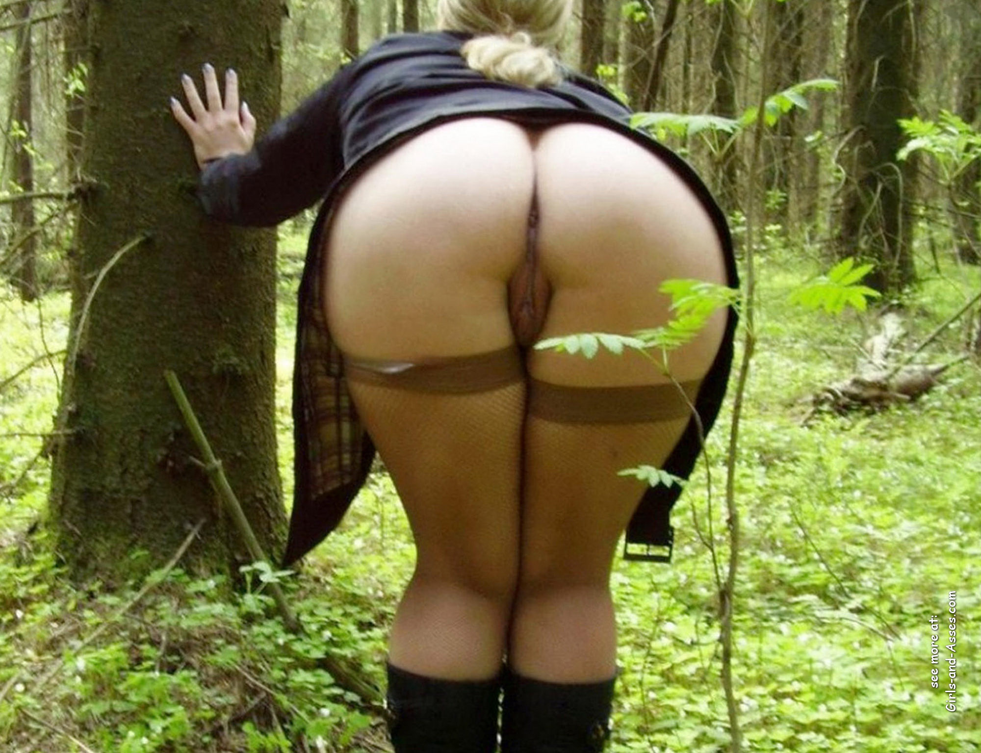 naked girl in doggystyle position in the forest photo 04427